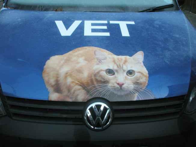 The Vet's Van