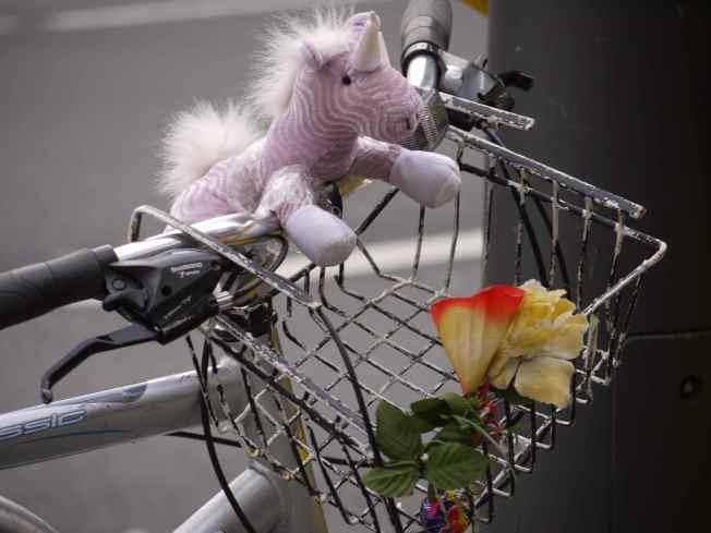 A Unicorn on the Handlebars