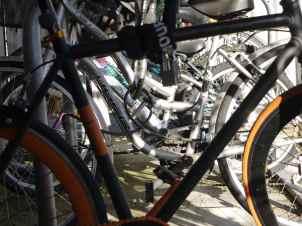 sunny bikes