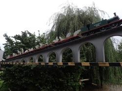 Train by Richard Farrington