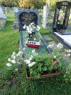 Camper Van Grave